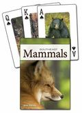 Mammals of the Southeast Playing Cards