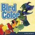 Bird Color (Adventure Boardbook)
