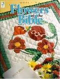 Flowers of the Bible: Quilting