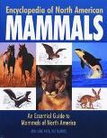 Encyclopedia Of North American Mammals An Essential Guide To Mammals Of North America