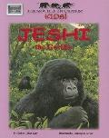 Jeshi the Gorilla