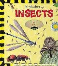 Alphabet of Insects
