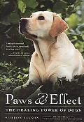Paws and Effect