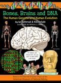 Bones, Brains And DNA The Human Genome And Human Evolution