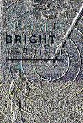 Summer Bright And Terrible Winston Churchill, Lord Dowding, And the Impossible Triumph of th...