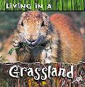 Living in a Grassland (Animal Habitats)