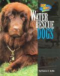 Water Rescue Dogs