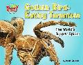 Goliath Bird-eating Tarantula The World's Biggest Spider