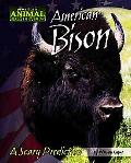 American Bison A Scary Prediction