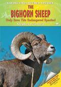 Bighorn Sheep Help Save This Endangered Species!
