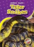 Tiger Snakes (Snakes Alive)
