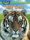 We Read Phonics-Big Cats (Nonfiction)