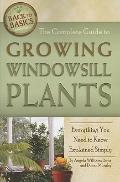 Complete Guide to Growing Windowsill Plants : Everything You Need to Know Explained Simply
