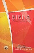 Biblia NBD economia (NBD Economy Bible)