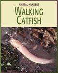 Walking Catfish