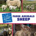 Farm Animals Sheep (21st Century Junior Library)