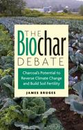 The Biochar Debate: Charcoal's Potential to Reverse Climate Change and Build Soil Fertility ...