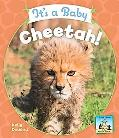 It's a Baby Cheetah!