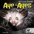Aye-Ayes (Nocturnal Animals)