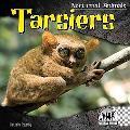 Tarsiers (Nocturnal Animals)