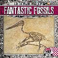 Fantastic Fossils (Rock on!: a Look at Geology)