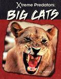 Big Cats (Xtreme Predators)