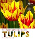 Plant Lover's Guide to Tulips