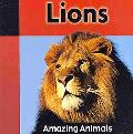 Lions (Amazing Animals)