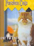 Persian Cats (Eye to Eye With Cats)