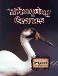 Whooping Cranes (Eye to Eye With Endangered Species)