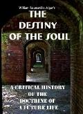 Destiny of the Soul : A Critical History of the Doctrine of A Future Life