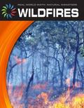 Wildfires (Real World Math)