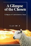 Glimpse of the Chosen : Glimpses of God's Elective Grace