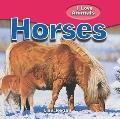 Horses (I Love Animals)