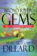 Broad River Gems : Southern Fiction with a Twist of Lemon