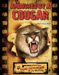 Ambushed by a Cougar
