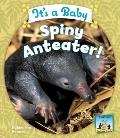 It's a Baby Spiny Anteater!