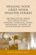Healing Your Grief When Disaster Strikes : 100 Practical Ideas for Coping after a Tornado, H...