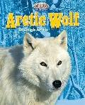 Arctic Wolf: The High Arctic (Built for the Cold: Arctic Animals)