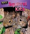 Squirrel Kits (Wild Baby Animals)