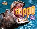 Hippo--River Horse