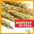 Harvest in Fall