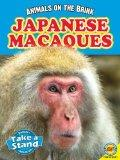 Japanese Macaques (Animals on the Brink)