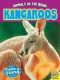 Kangaroos (Animals on the Brink)