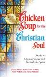 Chicken Soup for the Christian Soul: Stories to Open the Heart and Rekindle the Spirit (Chic...