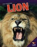 Lion (Great Predators)