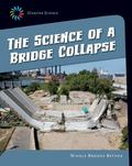 Science of a Bridge Collapse