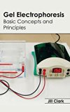 Gel Electrophoresis: Basic Concepts and Principles