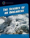 Science of an Avalanche