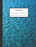 Lab Notebook: Physics Laboratory Notebook for Science Student / Research / Quad [ 100 pages ...